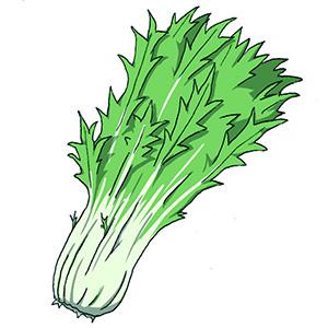 も 日当たり 育つ 野菜 悪く て が